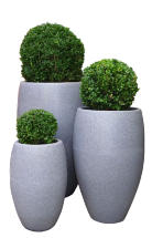 Havana Planter in Dark Granite
